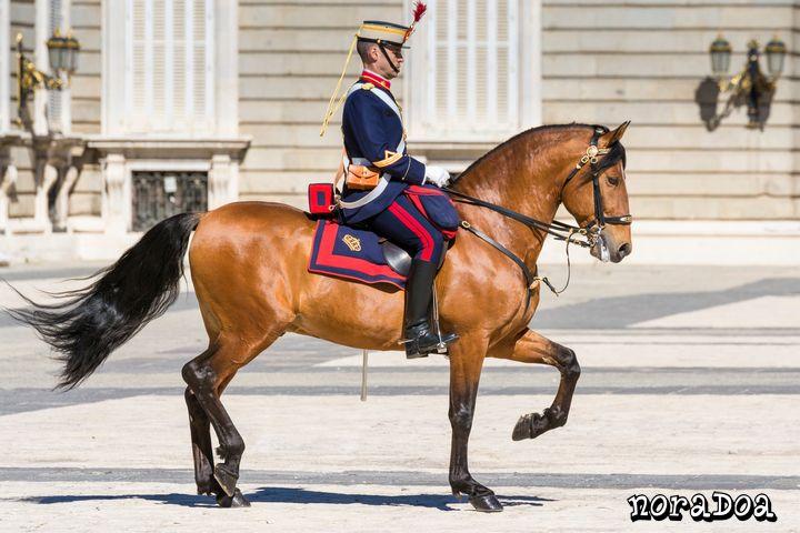 Cambio de Guardia en el Palacio Real de Madrid (España)