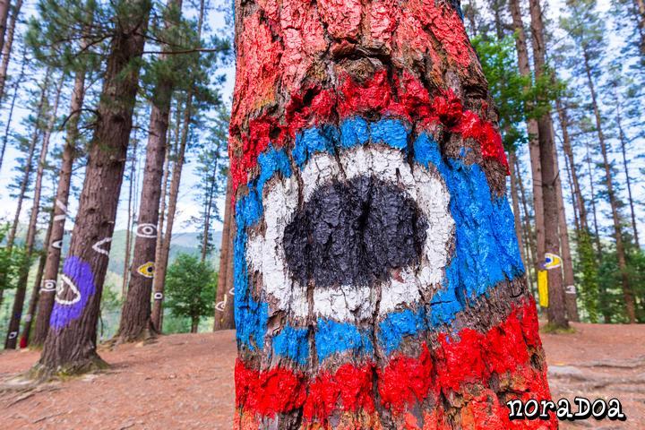 Bosque de Oma, Bizkaia (España)