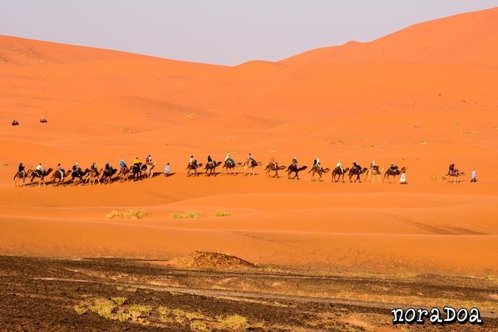 Dunas de Erg Chebbi (Marruecos)