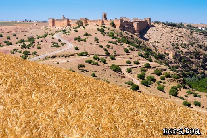 Kasbah Boulaouane (Marruecos)