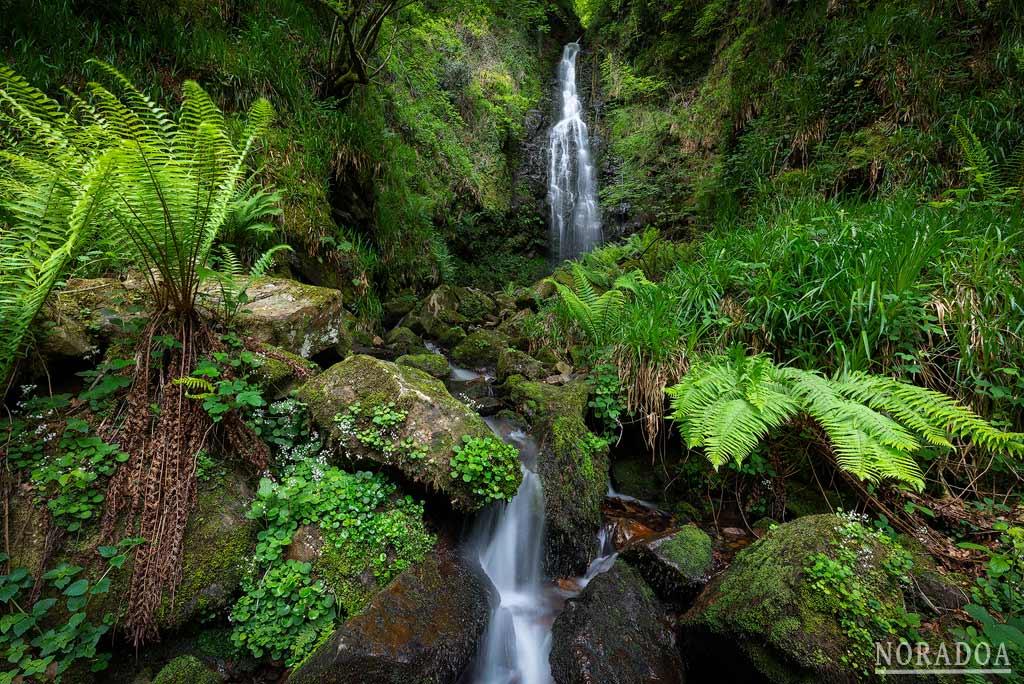 Cascada de Belaustegi en el parque natural del Gorbea