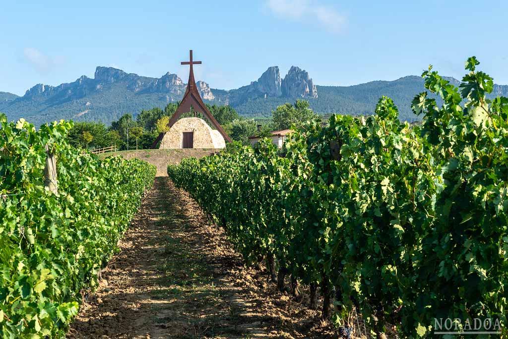 Los viñedos rodean la ermita de la Virgen la Esclavitud en Cihuri