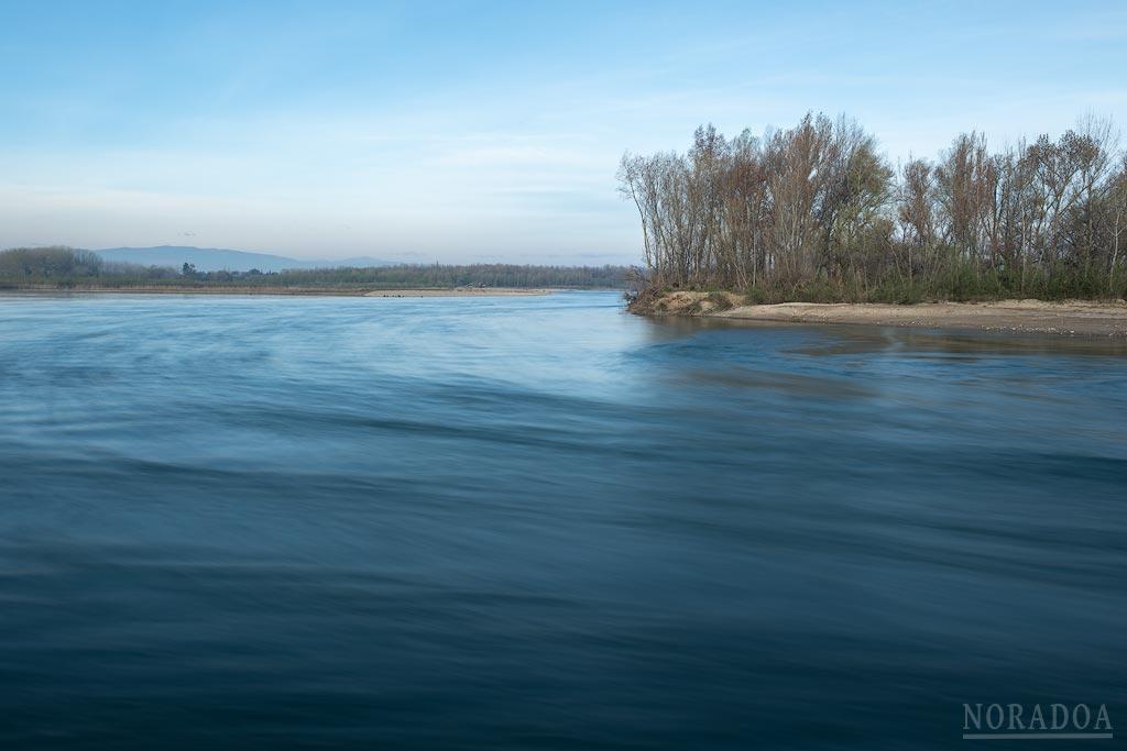 Río Ebro al paso por la reserva natural de los Sotos de Alfaro