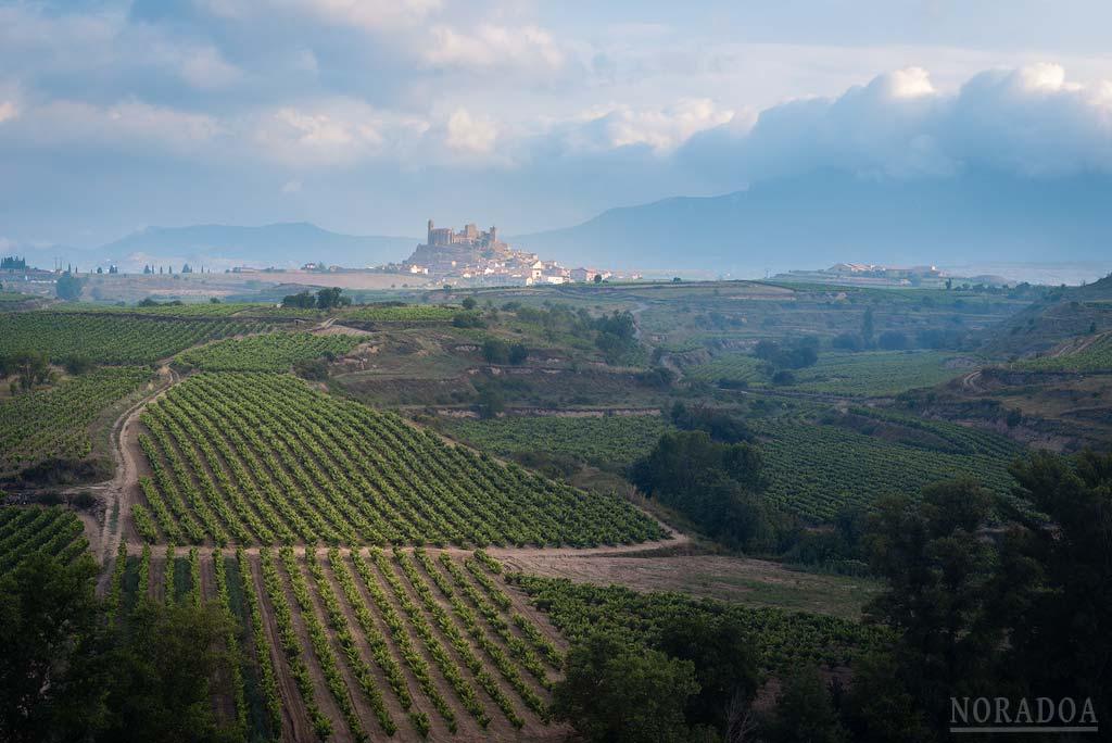 San Vicente de la Sonsierra y los viñedos en verano